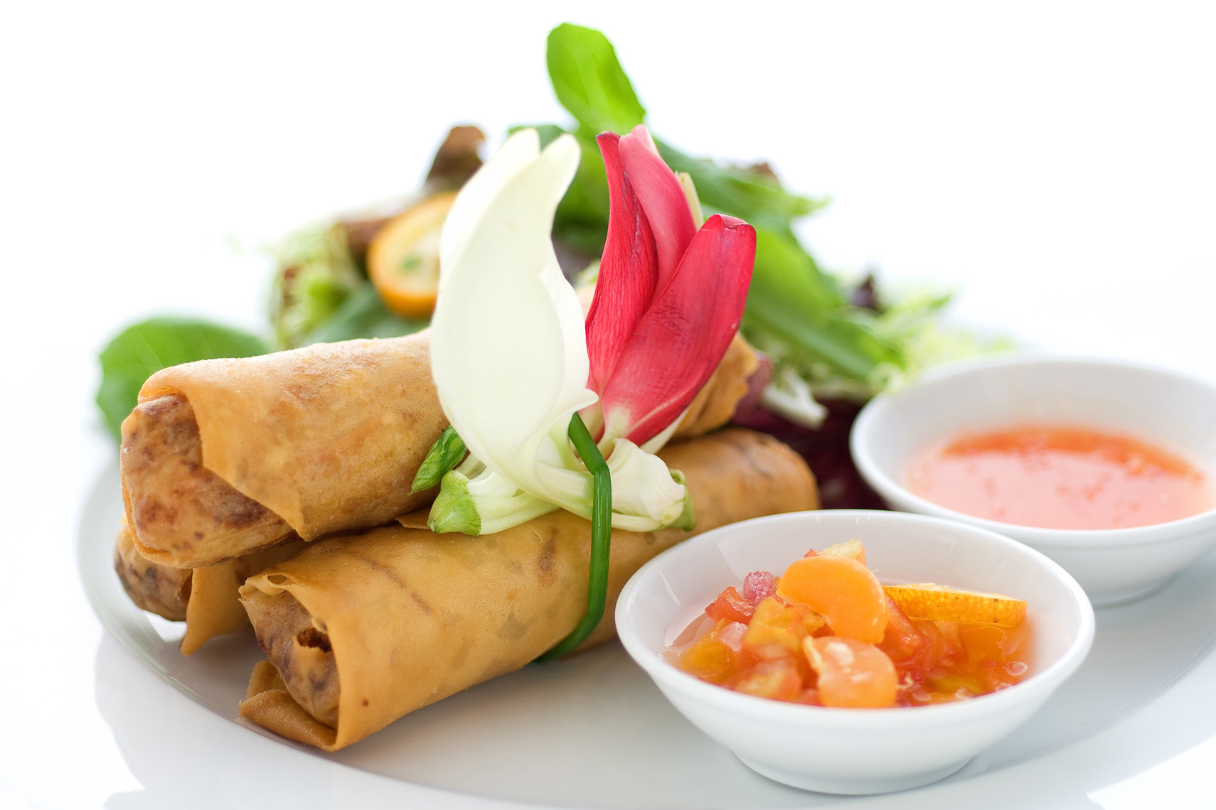 F003_food_shot_springrolls.jpg