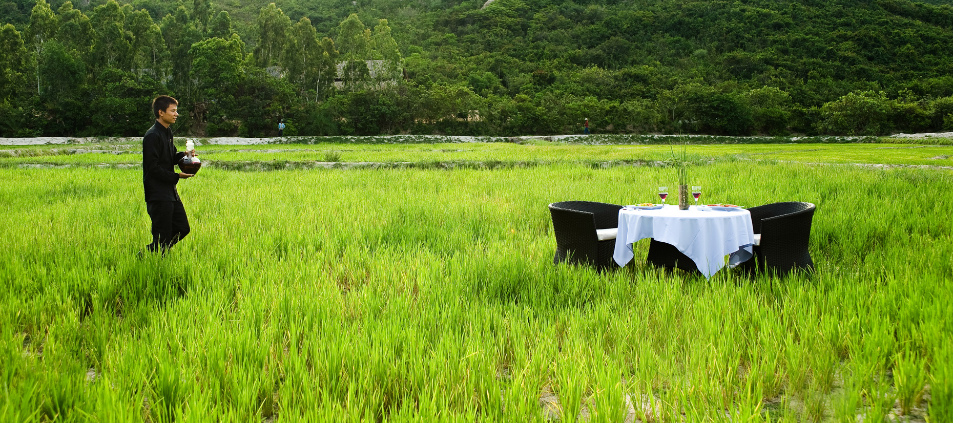 R016_resort_dining_on_ricefield.jpg